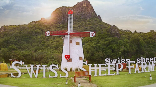 Swiss Sheep Huahin